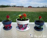 DIY Flower Pots