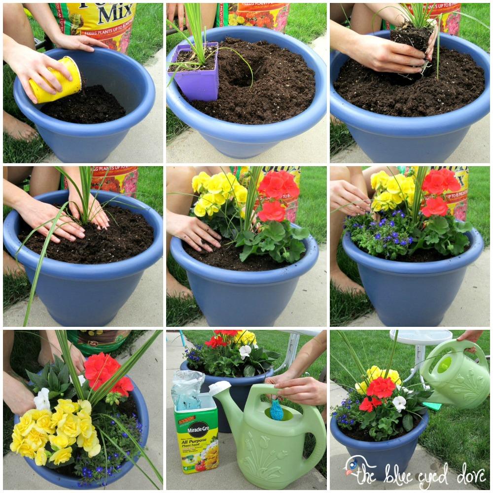 DIY Planted Flower Pots