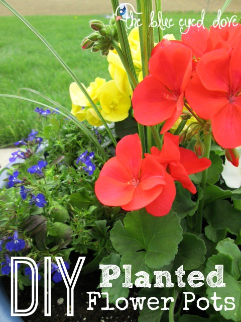 DIY Planted Flower Pots