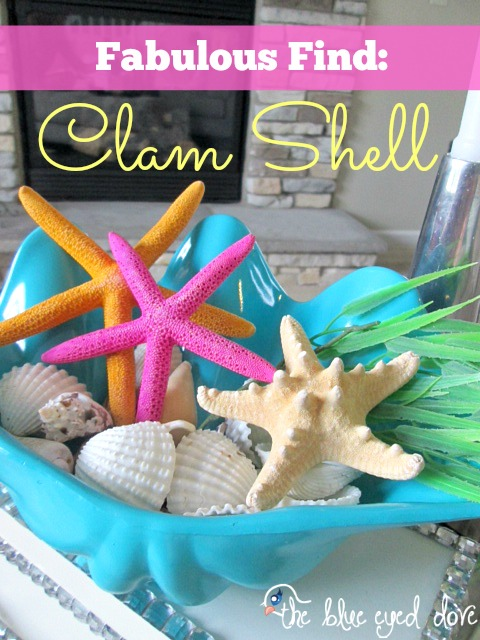 Clam Shell Fabulous Find
