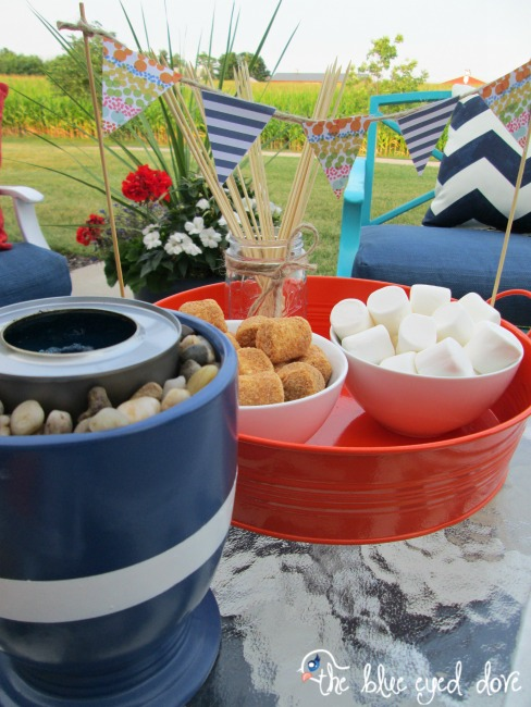 S'more Party