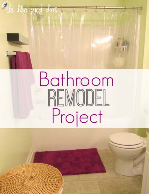 Bathroom Remodel Project